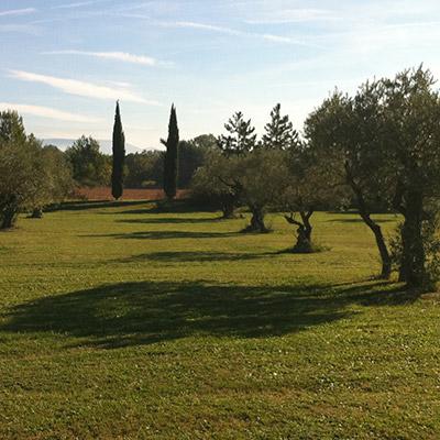 Aménagement d'espaces verts à Roussillon (Vaucluse)